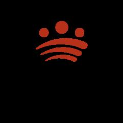logo_diputacion_595